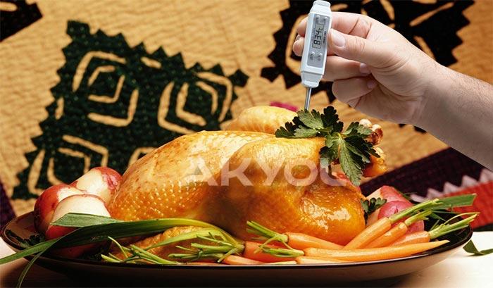 gıda sıcaklık ölçer