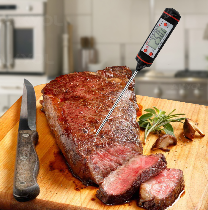 saplama prob gıda termometresi