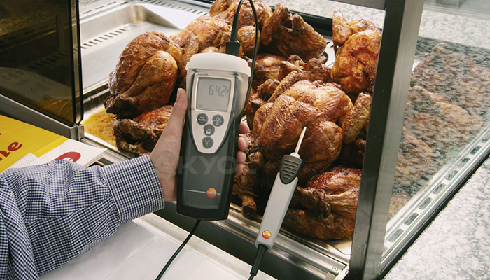 testo 925 problu sıcaklık ölçer